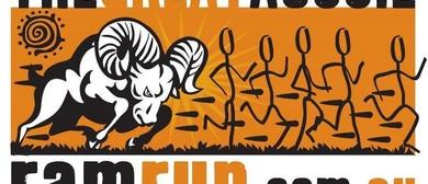 The Great Aussie Ram Run