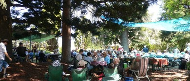 Jazz at The Pines Concert Series