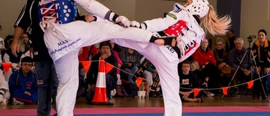 Blue Mountains Taekwondo Championships