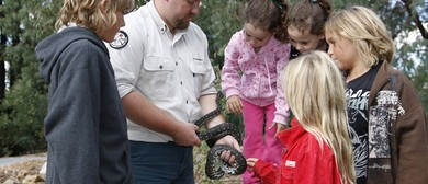 Ranger Guided Walks and Activities