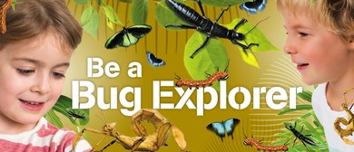 Be a Bug Explorer