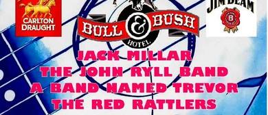 Bulls at the Bull Two