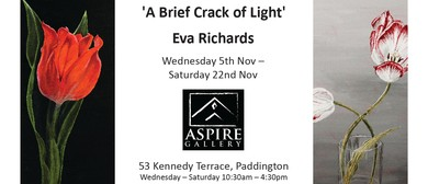 A Brief Crack of Light: An Exhibition by Eva Richards