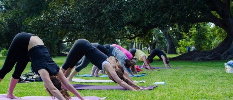Adelaide Yoga Community - Yoga in the Park