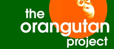 The Orangutan Project - Walkathon