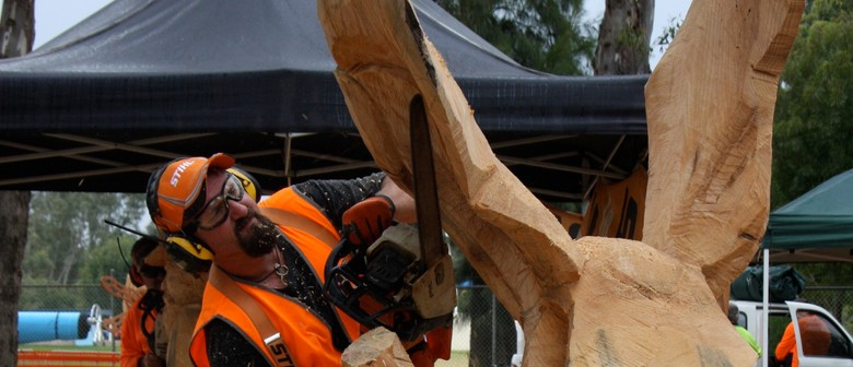 Australian chainsaw carving championships mount