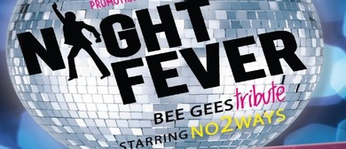 Night Fever - Tribute to Bee Gee's