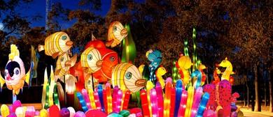 Chinese Lantern Carnival 2015