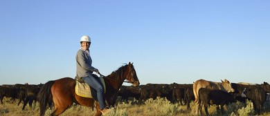 The Long Paddock Cattle Drive