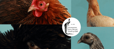 Tas Rare Breeds Poultry Wekend