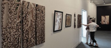 Southern Downs Region Artists Exhibition