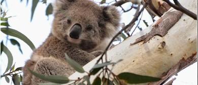 3rd Australian Wildlife Tourism Conference