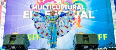 Multicultural Eid Festival & Fair 2015