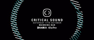 Critical Sound With Phace Pres. By Breakneck - Flying Colour