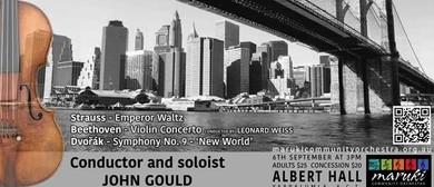 Maruki Comunity Symphony Orchestra