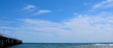 Sea Shepherd Adelaide Beach Clean Up