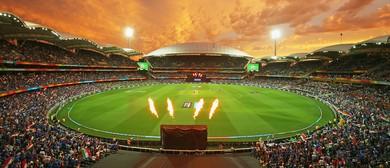 1st KFC T20 Intl: Australia Vs India
