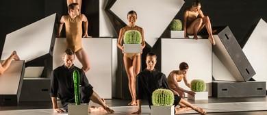 CounterMove – Sydney Dance Company