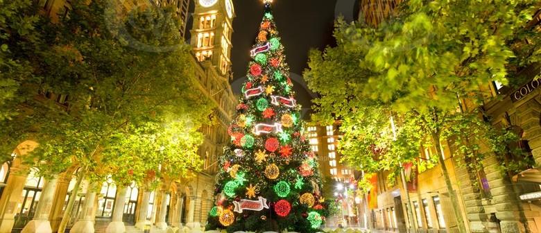 Martin Place Christmas Tree - Sydney Christmas