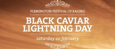 Black Caviar Lightning Day