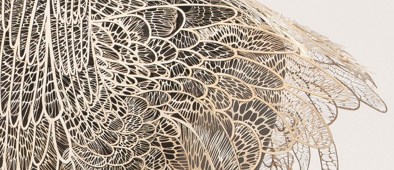 Magnified: 12 Years Of The Waterhouse Natural Science Art