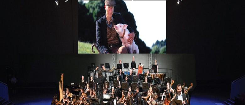 Darwin Symphony Orchestra - Master Series 4