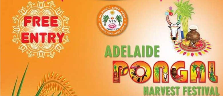 Adelaide Pongal 2016 - The Harvest Festival
