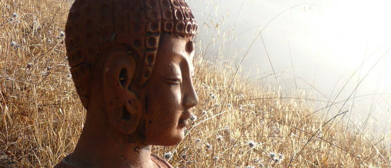 Insight Meditation Workshop