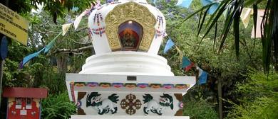 Meditation for Beginners With Ven. Tsondru