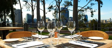 From Trellis to Terrace: Tales From the Vine