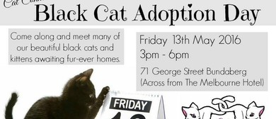 Cat Connections HQ Black Cat Adoption Day