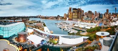 Vivid Sydney Celebration