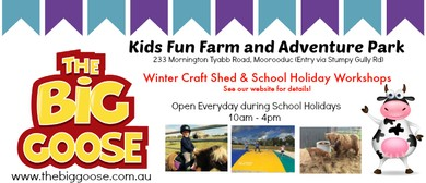 Winter Craft Shed and School Holiday Courses