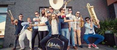 Hot Potato Band, Cheap Fakes