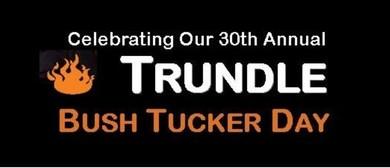 Trundle Bush Tucker Day