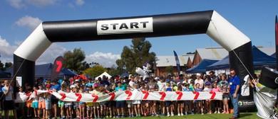 Run for Fun and Community Fair
