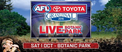 2016 Toyota AFL Grand Final Live