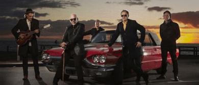 The Black Sorrows - Faithful Satellite Album Launch Tour