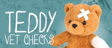 Springtime Teddy Vet Checks