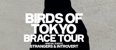 Birds of Tokyo With Strangers and Introvert