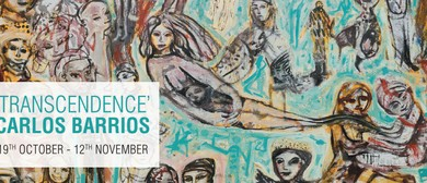 Exhibition - Transcendence Carlos Barrios