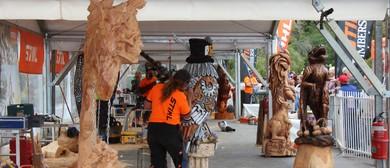 Australian Chainsaw Carving Championships 2017 - STIHL