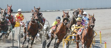 Hot to Trot Summer Racing