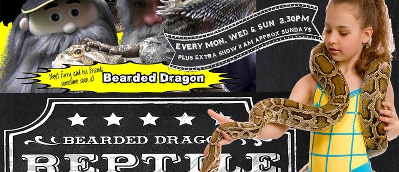 Bearded Dragon Crocodile and Reptile Show
